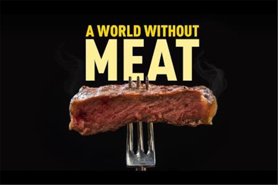 a-world-without-meat